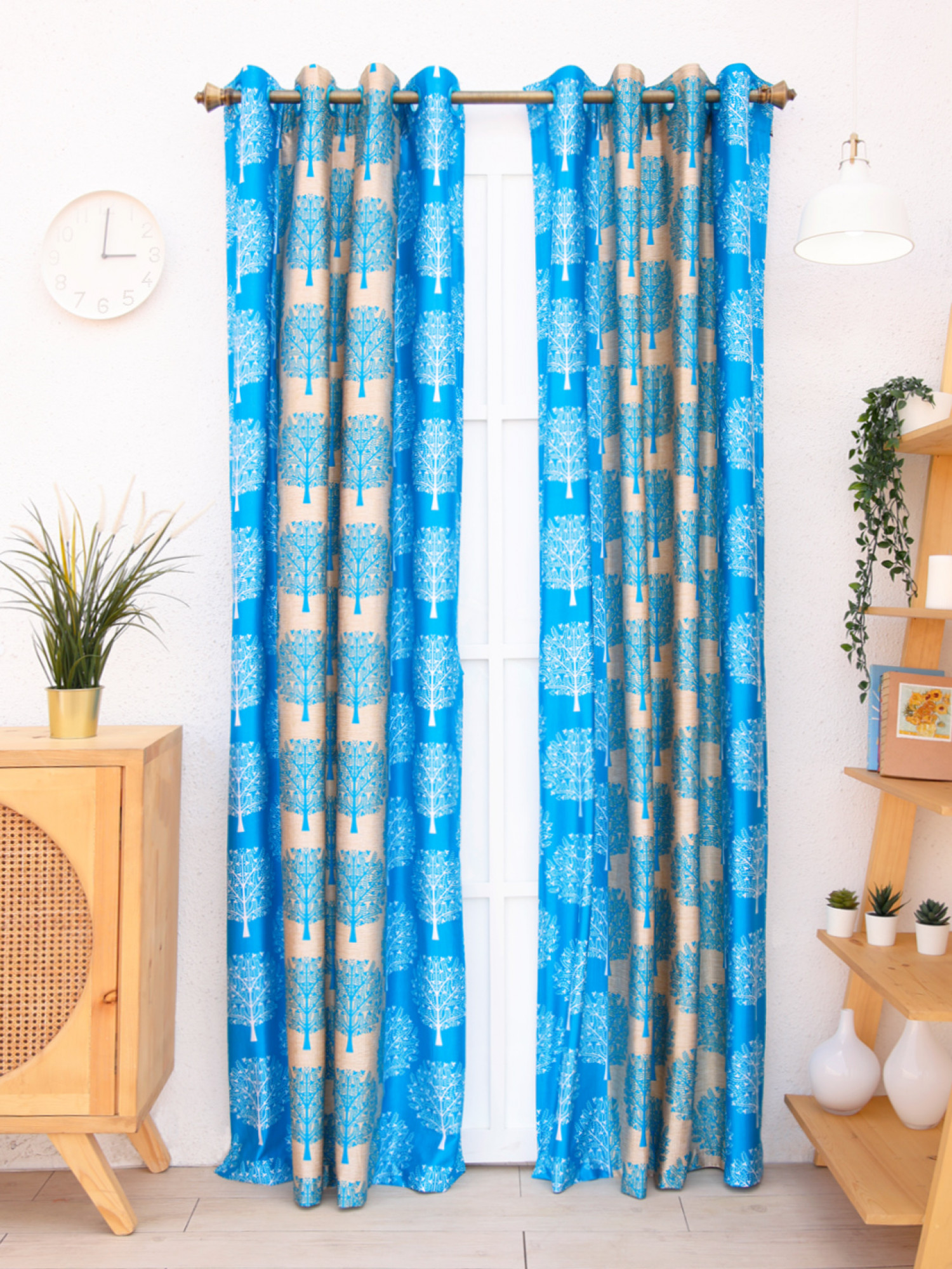 Guzmania Curtain